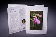 Artemis Greeting Cards - 100% FSC Recycled - Made in NH