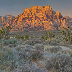 Sunrise at Red Rock Canyon Conservation Area, Las Vegas, Nevada, USA