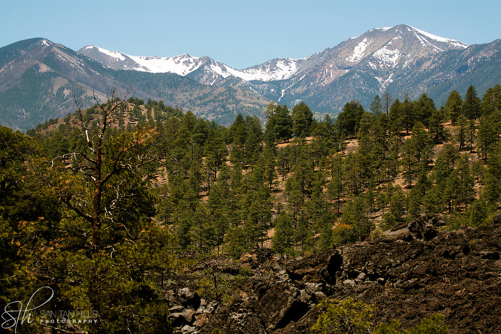 San Francisco Peaks, as seen from Sunset Crater, AZ