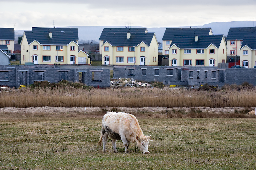 A cow grazes in a field in front of an unfinished housing estate in Bundoran, Co. Donegal. Unfinished housing estates, where the builders have left the site, are dotted around the Irish countryside.
