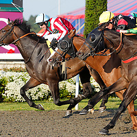 Artic Lynx and Jim Crowley winning the 7.20 race