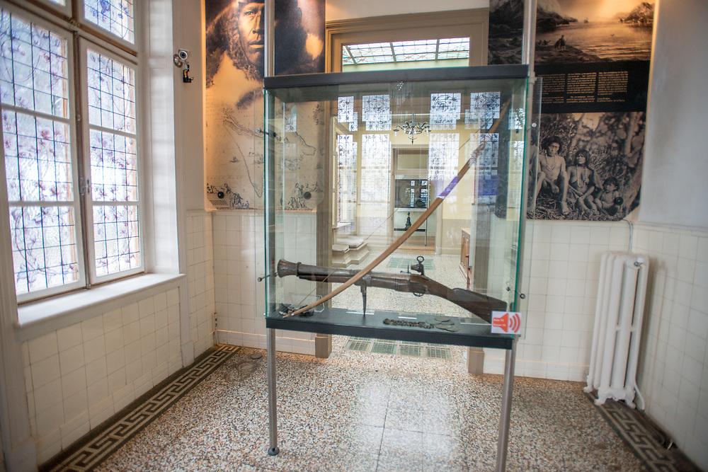 Braun Menendez Historical Museum Rifle Case, Punta Arenas ,Chile