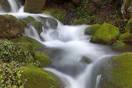 River Ason, Collados del Ason, Cantabria, Spain