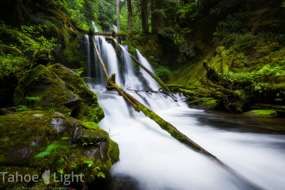 Lower Panther Falls in souther Washington. The lush greenery and waterfalls of the Pacific Northwest are a must visit.