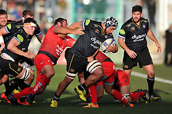 Leroy Houston of Bath Rugby takes on the Toulon defence - Mandatory byline: Patrick Khachfe/JMP - 07966 386802 - 10/01/2016 - RUGBY UNION - Stade Mayol - Toulon, France - RC Toulon v Bath Rugby - European Rugby Champions Cup.