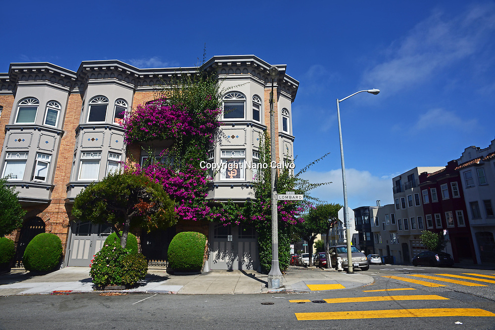 Purple flowers covering building in Lombard Street, San Francisco.