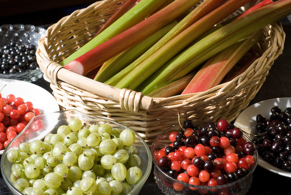 A basket of rhubarb surrounded by bowls of cherries and berries