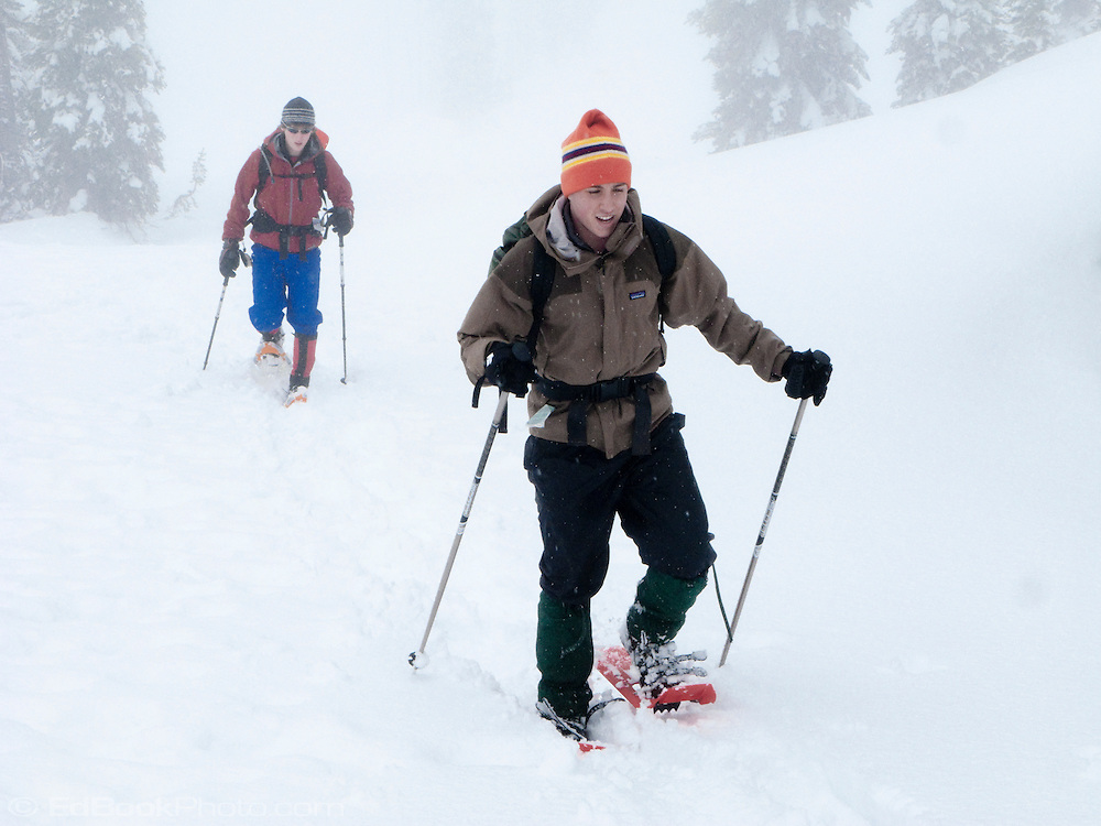 Two male snowshoers hike on a snowy foggy day at Paradise in Mount Rainier National Park, Washington, USA.