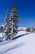 Backcountry skiing in the Ansel Adams Wilderness, Sierra Nevada Mountains, California USA
