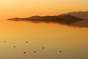 Ducks rest on the calm waters of the Great Salt Lake in Utah as the setting sun casts a warm glow.
