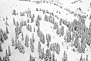 Aerial view of the upper snow covered Whistler Mountain wilderness in British Columbia as photographed from a helicopter during a February snowstorm.