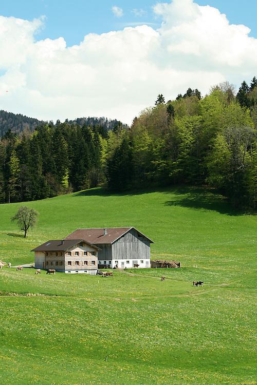Alpine Farmhouse