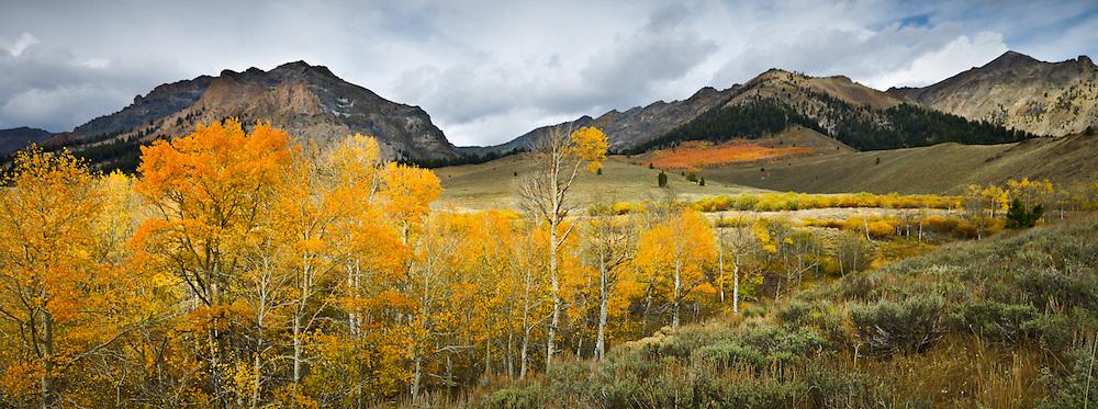 Boulder Mountains in Fall, near Sun Valley Idaho