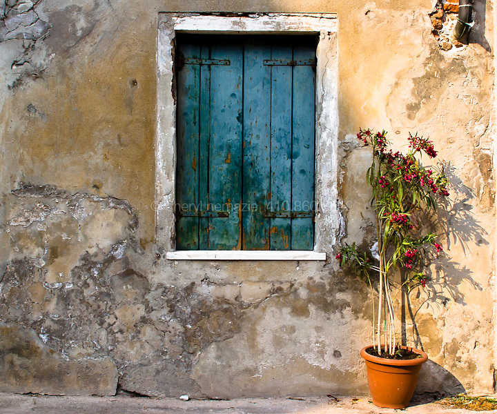 Layers of plaster, paint and plants give Venice it's vibrant hues.