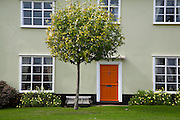 House on the village green with tree outside, Walberswick, Suffolk, England,
