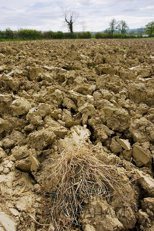 Earth of ploughed field, Wyck Rissington, Gloucestershire, United Kingdom