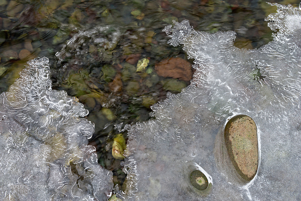 Ice and rocks form an abstract. Dungeness River, Sequim WA