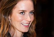 &copy; Copyright 2014 by Stefan Reimschuessel. <br />