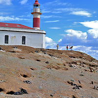 Lighthouse at Penguin Reserve on Magdalena Island, Chile<br /> Lighthouses are typically a major draw for tourists.  However, the Faro Isla Magdalena is a distance second attraction compared to the thousands of Magellanic penguins surrounding it. This white, cylindrical beacon with a bold red stripe and roof became operational in 1902. It was manned by a keeper who lived in the white house until the light became automated during the 1950's. After a renovation in 1995, the building serves as an office for staff who manage the penguin reserve.