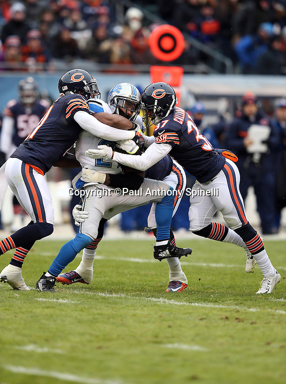 Detroit Lions running back Ameer Abdullah (21) gets gang tackled by Chicago Bears outside linebacker Willie Young (97), Chicago Bears cornerback Tracy Porter (21), and Chicago Bears rookie cornerback Bryce Callahan (37) during the NFL week 17 regular season football game against the Chicago Bears on Sunday, Jan. 3, 2016 in Chicago. The Lions won the game 24-20. (©Paul Anthony Spinelli)