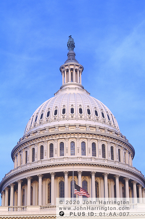 A detailed view of the Capitol Building.