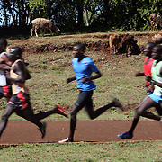Kenyan long distance runners practice speed work at the Kamariny stadium in the high altitude village of Iten, in Kenya's rift valley. The recent post-election violence in Kenyan disrupted many runners training programs, but they are now back in training for the upcoming Olympic games in China and other international events.