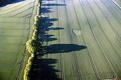 GERMANY SCHLESWIG-HOLSTEIN KIEL 9JUN02 - North German landscape after sunrise as seen from the hot-air balloon...jre/Photo by Jiri Rezac..© Jiri Rezac 2002..Contact: +44 (0) 7050 110 417..Mobile:  +44 (0) 7801 337 683.Office:  +44 (0) 20 8968 9635..Email:   jiri@jirirezac.com.Web:     www.jirirezac.com