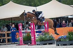 Kalf Cristel, NED, Jopie Amazing Jr<br /> KWPN Kampioenschappen - Ermelo 2019<br /> © Hippo Foto - Dirk Caremans<br /> Kalf Cristel, NED, Jopie Amazing Jr