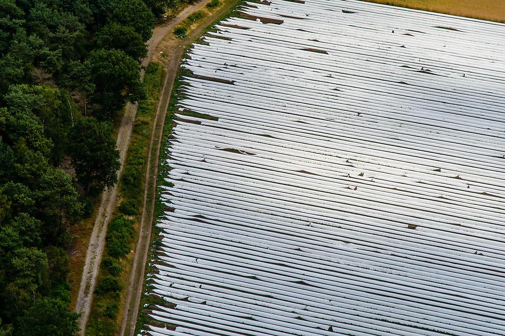 Nederland, Noord-Brabant, Gemeente Someren, 26-06-2014;  <br /> Akkers met asperges onder landbouwplastic.<br /> Fields of asparagus under plastic cover<br /> luchtfoto (toeslag op standaard tarieven);<br /> aerial photo (additional fee required);<br /> copyright foto/photo Siebe Swart.