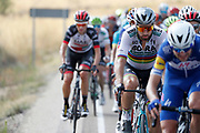 Peter Sagan (SVK - Bora - Hansgrohe) during the 73th Edition Tour of Spain, Vuelta Espana 2018, stage 10 cycling race, Salamanca - Fermoselle Bermillo de Sayago 177 km on September 4, 2018 in Spain - Photo Luis Angel Gomez / BettiniPhoto / ProSportsImages / DPPI