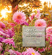 New book! Light Grows the Garden