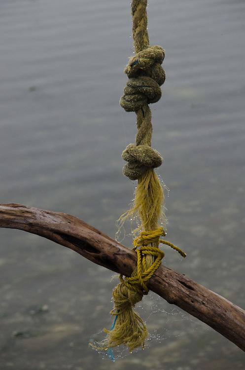 Tumbo Island, Gulf Islands National Park Reserve, British Columbia, Canada