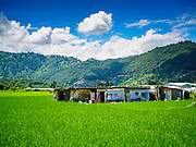 03 AUGUST 2015 - SANKHU, NEPAL:   Farmers live in temporary shelters in their rice fields in Sankhu, a community about 90 minutes from central Kathmandu. Their homes were destroyed in the earthquake. The Nepal Earthquake on April 25, 2015, (also known as the Gorkha earthquake) killed more than 9,000 people and injured more than 23,000. It had a magnitude of 7.8. The epicenter was east of the district of Lamjung, and its hypocenter was at a depth of approximately 15 km (9.3 mi). It was the worst natural disaster to strike Nepal since the 1934 Nepal–Bihar earthquake. The earthquake triggered an avalanche on Mount Everest, killing at least 19. The earthquake also set off an avalanche in the Langtang valley, where 250 people were reported missing. Hundreds of thousands of people were made homeless with entire villages flattened across many districts of the country. Centuries-old buildings were destroyed at UNESCO World Heritage sites in the Kathmandu Valley, including some at the Kathmandu Durbar Square, the Patan Durbar Squar, the Bhaktapur Durbar Square, the Changu Narayan Temple and the Swayambhunath Stupa. Geophysicists and other experts had warned for decades that Nepal was vulnerable to a deadly earthquake, particularly because of its geology, urbanization, and architecture.    PHOTO BY JACK KURTZ