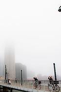 ROTTERDAM - de kop van zui in de mist ROBIN UTRECHT