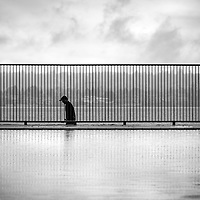 A lone silhouetted man walking past a fence with vertical lines.