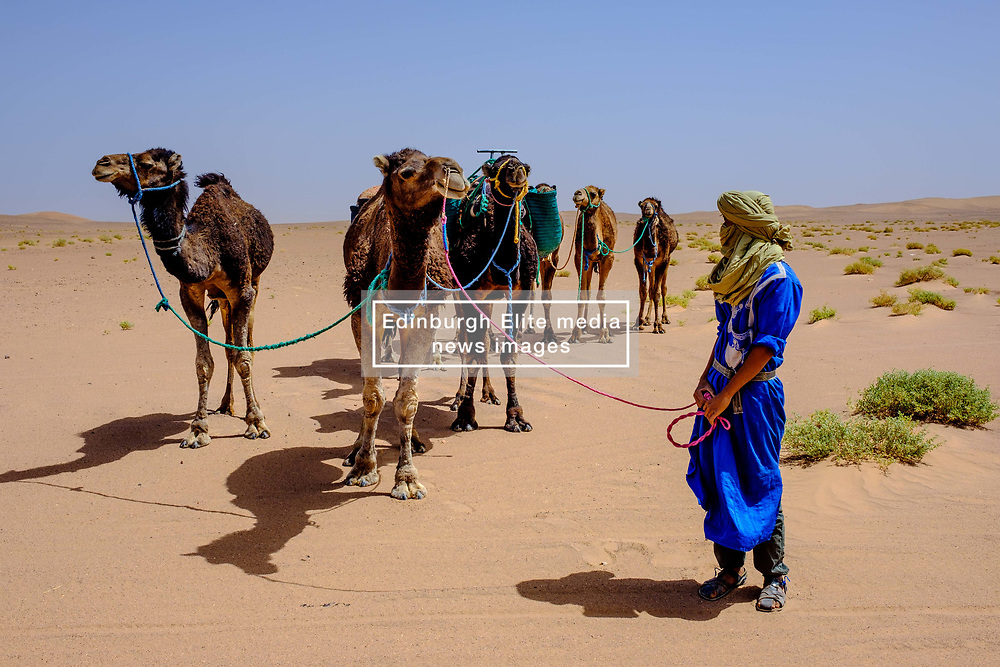A Berber man in traditional dress leading a camel train in the Moroccan Sahara Desert<br /> <br /> (c) Andrew Wilson | Edinburgh Elite media