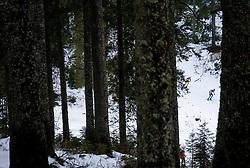 Athlete competes during Men 10 km Sprint at day 2 of IBU Biathlon World Cup 2014/2015 Pokljuka, on December 19, 2014 in Rudno polje, Pokljuka, Slovenia. Photo by Vid Ponikvar / Sportida