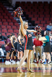 NORMAL, IL - February 27: Redbird Redline Dancer during a college women's basketball game between the ISU Redbirds and the Bears of Missouri State February 27 2020 at Redbird Arena in Normal, IL. (Photo by Alan Look)