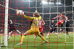 29.10.2010, Allianz Arena, Muenchen, GER, 1.FBL, FC Bayern Muenchen vs SC Freiburg, im Bild Tor zum 1-0 durch Martin Demichelis (Bayern #6)  , EXPA Pictures © 2010, PhotoCredit: EXPA/ nph/  Straubmeier+++++ ATTENTION - OUT OF GER +++++