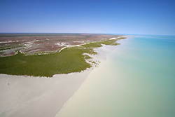 Mangroves meet the tides on the shores of Roebuck Bay on the Kimberley coast south of Broome.