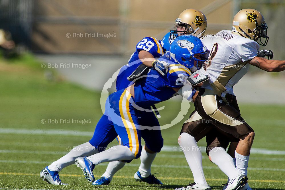 01 September 2012:  The No. 7 UBC Thunderbirds fell 31-24 to the Manitoba Bisons in the opening Canada West regular season football game for both teams on Saturday afternoon in Vancouver at Thunderbird Stadium, University of British Columbia, Vancouver, BC, Canada. ****(Photo by Bob Frid/UBC Athletics  2012 All Rights Reserved****)