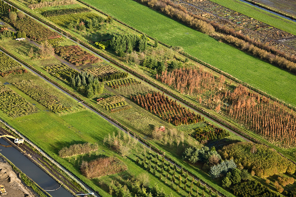 Nederland, Utrecht, De Bilt, 25-11-2008; boomkwekerij aan de Noordelijke rand van Utrechtop de kwekerij wordt ook aarde en potgrond geproduceerdnursery at the Northern edge of Utrecht, the nursery also produces earth and potting soilallotment, pattern, autumn colors, warm colors, autumn, verkaveling, patroon, herfstkleuren, warme kleuren, herfst.  .luchtfoto (toeslag)aerial photo (additional fee required).foto Siebe Swart / photo Siebe Swart