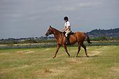Class 18 - Ridden Handy Pony & Horse