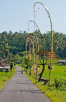 A rural road in Eastern Bali, Indonesia
