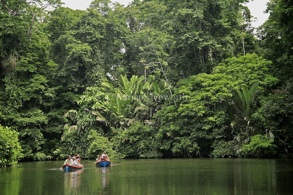 Tourists in Canoes, Rainforest, Tortuguero National Park, Costa Rica.<br />