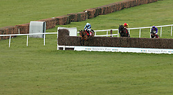Pete The Feat ridden by Jonathan Burke during the Matchbook Racing Is Commission Free Handicap Chase during Matchbook Imperial Cup Day at Sandown Park Racecourse, Esher.