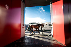 Departure of the horses to the Rio Olympics from Liege Airport - Liege 2016<br /> © Hippo Foto - Dirk Caremans<br /> 30/07/16