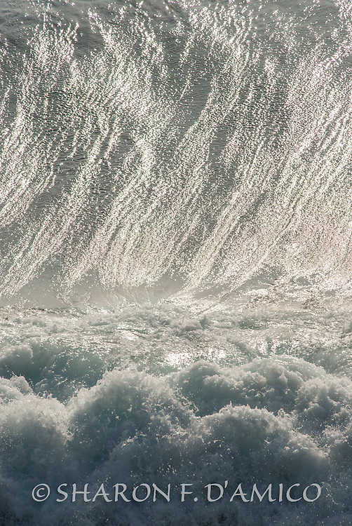 OCEAN WAVE 6682.JPG<br />