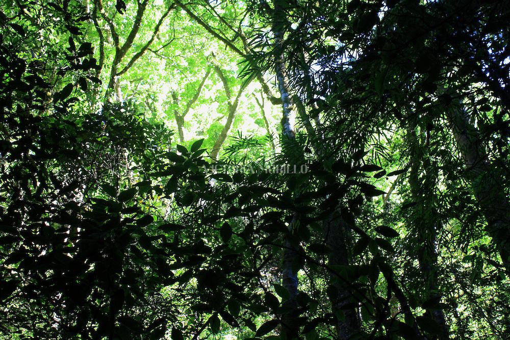 El Volc&aacute;n Bar&uacute; (a veces llamado Volc&aacute;n de Chiriqu&iacute;) es la elevaci&oacute;n m&aacute;s alta de Panam&aacute;, y el volc&aacute;n m&aacute;s alto del sur de Am&eacute;rica Central, con una altura de 3.475 msnm.<br /> Es un volc&aacute;n dormido localizado al sur de la divisi&oacute;n continental al oeste de la provincia de Chiriqu&iacute; y est&aacute; rodeado por un &aacute;rea f&eacute;rtil de tierras altas y ayudados por los r&iacute;os Chiriqu&iacute; y Caldera. Las ciudades de Volc&aacute;n y Cerro Punta se encuenta en el lado oeste, mientras que Boquete est&aacute; al lado este.<br /> La erupci&oacute;n m&aacute;s importante del volc&aacute;n ocurri&oacute; alrededor del a&ntilde;o 500. Existen reportes y evidencias de una erupci&oacute;n menor alrededor del a&ntilde;o 1550.<br /> Debido a lo angosto del istmo de Panam&aacute;, es posible ver el Oc&eacute;ano Pac&iacute;fico y el Mar Caribe desde la cima del volc&aacute;n en un d&iacute;a claro. Se ha reportado en la cima una ca&iacute;da ocasional de nieve, donde la temperatura m&iacute;nima es inferior a 0 &ordm;C, La formaci&oacute;n de escarcha es frecuente