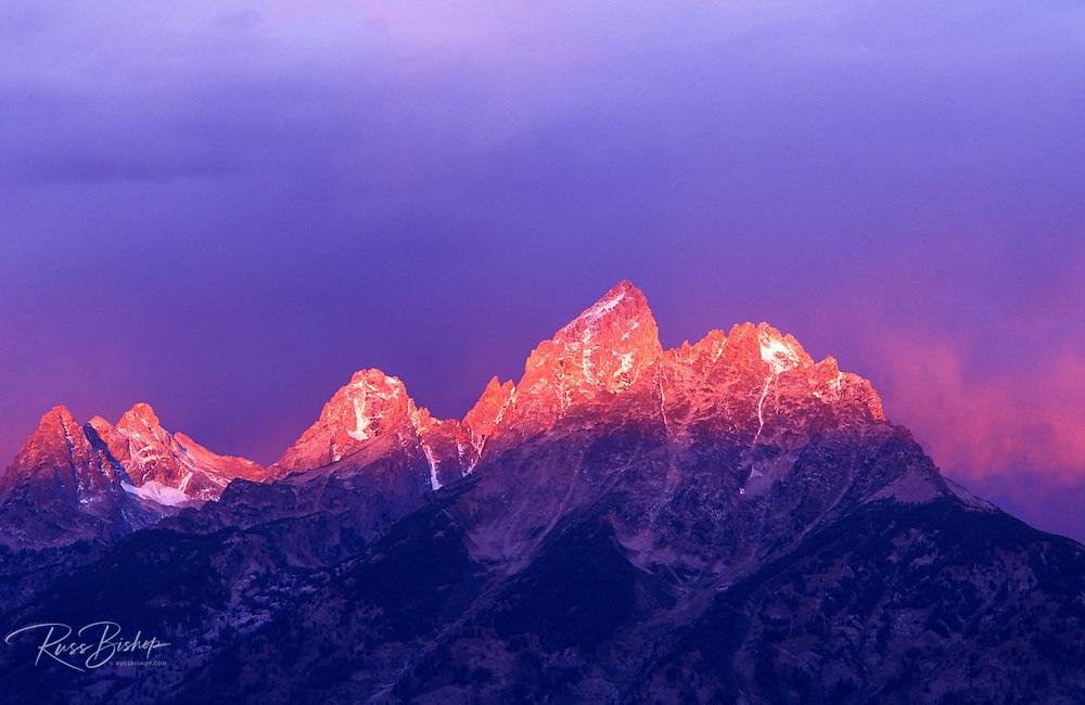 Pink light at dawn on the Grand Teton, Grand Teton National Park, Wyoming USA